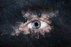 Glasierendes Auge Stockbild