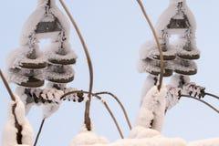 Glasisolierung auf der Stromleitung Isolator von elektrischen Hochspannungslinien Stockfotografie