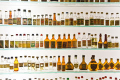 Glaskabinet met historische flessen van Grappa in een Museum in Basano del Grappa, Italië stock foto's