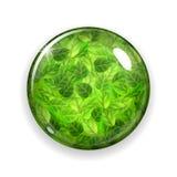 Glasknoop of gebied met groene bladeren royalty-vrije illustratie