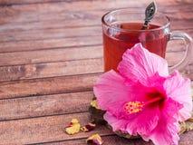 Glaskop met de rode bloem van de thee roze hibiscus op donkere houten achtergrond Stock Afbeelding