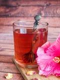Glaskop met de rode bloem van de thee roze hibiscus op donkere houten achtergrond Stock Afbeeldingen