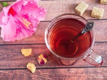 Glaskop met de rode bloem van de thee roze hibiscus op donkere houten achtergrond Stock Foto