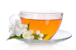 Glaskop thee met jasmijn Stock Foto