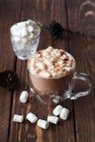 Glaskop van cacao met heemst stock afbeelding