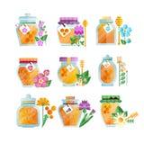 Glaskruiken kruidenhoningsreeks, natuurlijke gouden organische honing en wilde bloemen vectorillustraties op een witte achtergron Royalty-vrije Stock Afbeeldingen