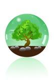 Glaskugel des großen Baums Lizenzfreie Stockbilder