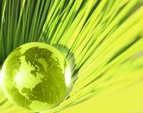 Glaskugel im frischen grünen Gras. Lizenzfreies Stockfoto