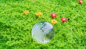 Glaskugel im grünen Gras Stockbild