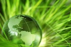 Glaskugel im Gras Lizenzfreie Stockbilder