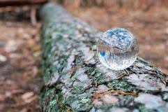 Glaskugel oder Kugel für Fortunetelling, soothsaying Lizenzfreie Stockfotografie