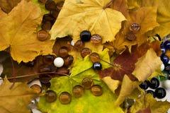 Glaskugeln auf Herbstlaub Lizenzfreie Stockfotografie