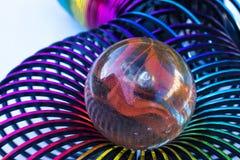 Glasmarmer in een plastic nest Stock Fotografie