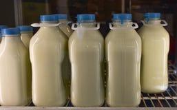 Glasquart und halbe Gallonenweinlesebehälter weiße Milch auf Lebensmittelgeschäft Stockfoto
