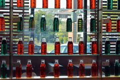 Glasregale der grünen und roten Flaschenwand im Restaurant mit Glasfenster im Hintergrund Lizenzfreie Stockfotos