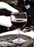 Glass. Red wine Stock Image