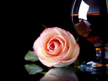 Glass with alcohol and rose. Royalty Free Stock Photos