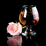 Glass with alcohol and rose. Royalty Free Stock Photo
