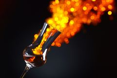 Glass of alcoholic drink Stock Photography