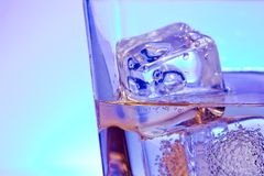 Glass of alcoholic drink with ice on disco blue light Royalty Free Stock Image