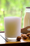 Glass of almond milk on a table with almonds front view closeup Stock Images