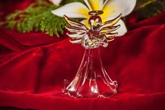 Glass Angel 2. Glass Angel on Red Velvet reflecting the flower of the Frangipani royalty free stock photography