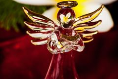 Glass Angel 3. Glass Angel on Red Velvet reflecting the yellow flower of the frangipani tree royalty free stock photos