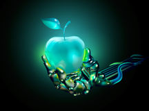 Glass apple in a hand. Of a cyborg. vector illustration Stock Photo