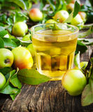 Glass of apple juice with apples Stock Photos