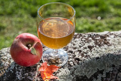 Glass of apple juice and fresh apple on the stone border. Royalty Free Stock Photography