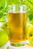 Glass of apple juice Royalty Free Stock Image