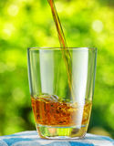 Glass of apple juice on nature background Royalty Free Stock Images