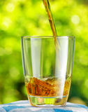 Glass of apple juice Stock Photography