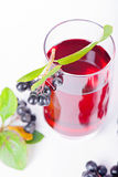 Glass of aronia juice with berries Stock Photography