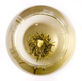 A glass of artisan blooming tea. On white Royalty Free Stock Photography