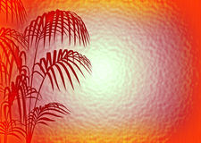 Glass background. A Glass background with silhouette of coconut tree royalty free illustration