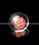 Glass ball. Inside on a black background with pink royalty free illustration