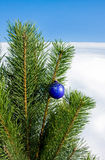 Glass ball on christmas tree Royalty Free Stock Photo