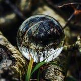 Glass ball stock photos