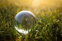 Glass ball on the grass Royalty Free Stock Image