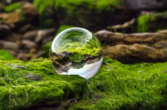 Glass ball lens lies on stones covered with green mud and reflec stock image