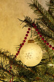 Glass ball ornament on tree Royalty Free Stock Images
