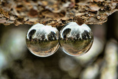 Glass balls like drops of water Royalty Free Stock Photos