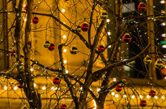 Glass balls on a tree branch Royalty Free Stock Images