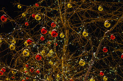 Glass balls on a tree Stock Images