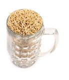 Glass with barley royalty free stock photography