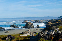 Glass Beach Stock Image