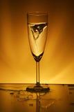 glass bedragare Arkivfoto