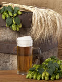 A glass of beer Royalty Free Stock Photos