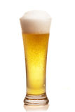 Glass of beer. Isolated over white royalty free stock photos